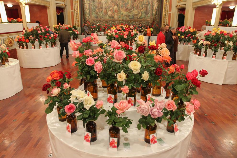 70è Concurs Exposició Nacional de Roses
